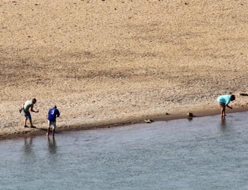 Percepção ambiental dos moradores ribeirinhos ao longo do Rio Grande